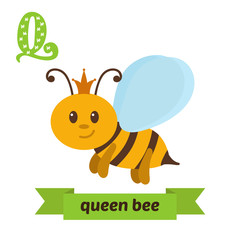 Queen bee. Q letter. Cute children animal alphabet in vector. Fu