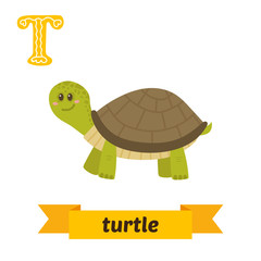 Turtle. T letter. Cute children animal alphabet in vector. Funny