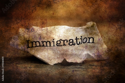 immigration paper Irish immigration: the similarities and differences of migrating in america and canada donald akenson, in his paper entitled �what is known about the irish in north america� tried to.