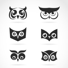 Vector image of an owl face design on white background. Vector o