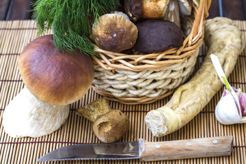 Still life with white mushrooms. Ingredients for preserving whit