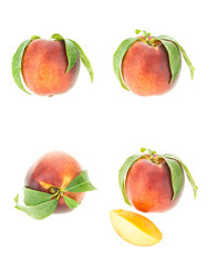 Peach with leaves in various positions, isolated on white background.