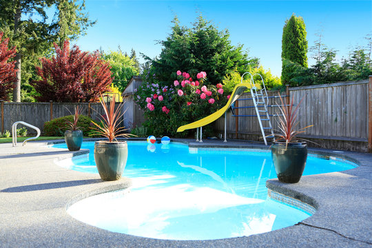 Fenced backyard with small beautiful swimming pool