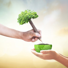 World soil day concept: Two human hands holding pencil tree and a half earth globe of grass over blurred nature background