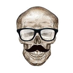 Hipster skull with sunglasses and mustache. Vector illustration