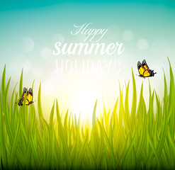 Beautiful summer background with grass and butterflies. Vector.