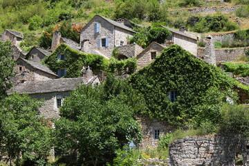 Hauterives , gorges du Tarn, Lozère, France