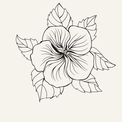 Hawaii hibiscus flower, leaf for Coloring book page for adult