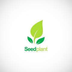 seed plant green organic logo
