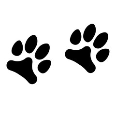 Animals footprints isolated on white background.