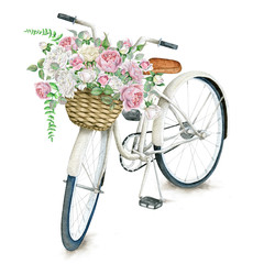 Watercolor hand drawn white bicycle with beautiful rose basket. Illustration isolated on white background