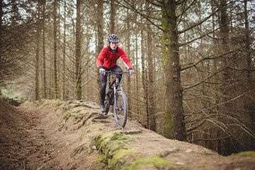 Male mountain biker riding in forest