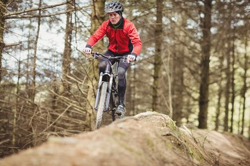 Mountain biker riding by trees in forest