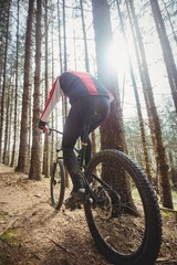 Mountain biker riding by trees in woodland