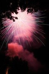 Fireworks in park with trees at Waterford NY