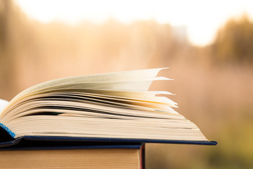 Open book over the landscape background