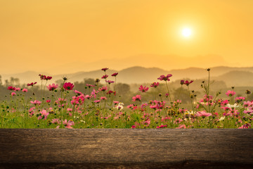 Empty wood table on cosmos flowers in sunset for product display