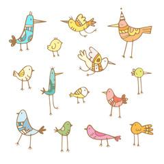 Cute cartoon colorful birds set. Vector contour image. Doodle style. Children's illustration. Funny animals.