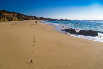 Footprints trail on empty beach in Garrapata State Park, California, USA