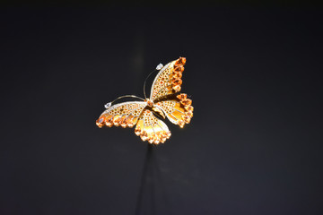 Craft butterfly