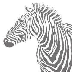 Animal illustration of vector black zebra striped silhouette. EPS