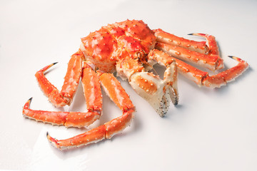 Large red king kamchatsky crab on white background