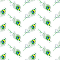 Seamless pattern with peacock feathers