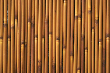 Small bamboo wood texture