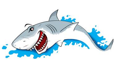 Danger Shark Illustration