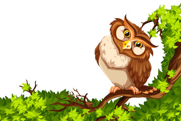 Cute owl on green branch