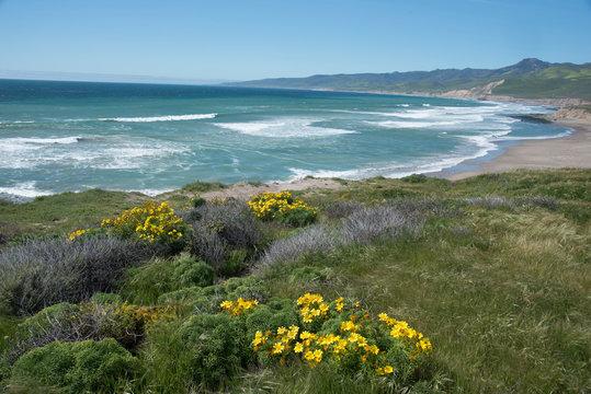 View of Jalama Beach County Park, near Lompoc, California