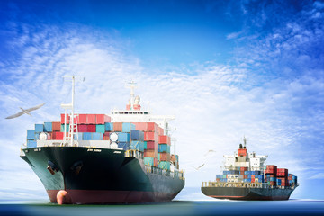 Container Cargo ship in the ocean with Birds flying in blue sky,