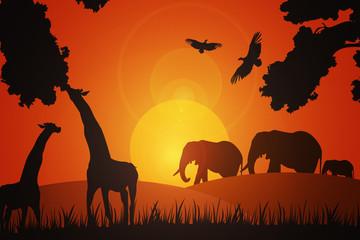 African Landscape Background