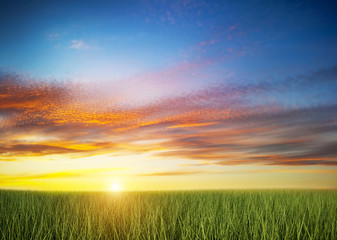 Green grass field under colorful sunset sky.