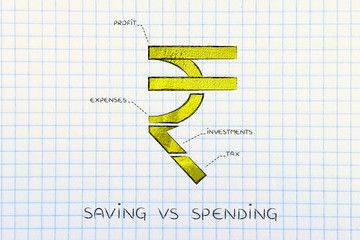 split rupee currency symbol with budgeting captions, saving vs s