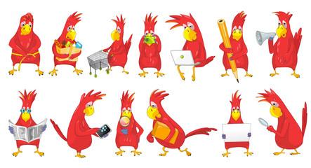 Vector set of funny parrots illustrations.