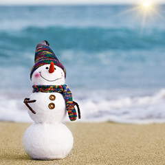 Smiling snowman on the sea beach