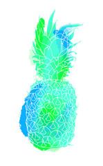 Colorful summer pineapple illustration art