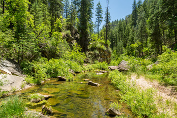 West Clear Creek Arizona