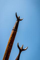 Les tridents des gardians de taureaux camarguais