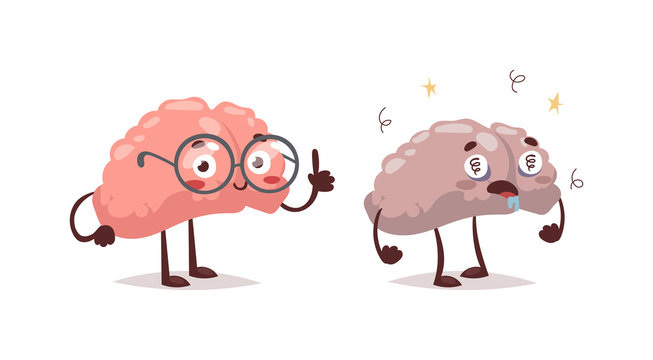 Stupid and clever vector grimace concept. Smart funny mind education, isolated stupid and clever brains. Human intelligent communication stupid and clever people brain organ concept.