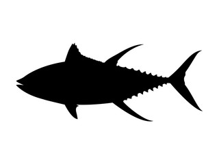 Yellowfin tuna silhouette. Vector illustration.