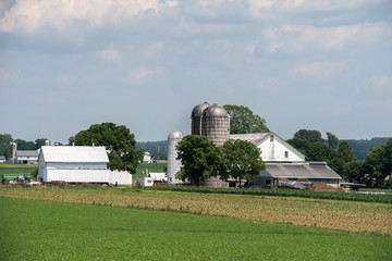 grain metallic silo in lancaster pennsylvania amish country