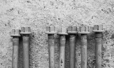 Head bolts black and white.