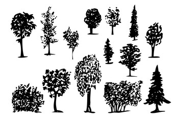 Coniferous Trees Silhouettes hand-drawn