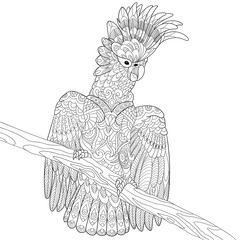 Zentangle stylized cartoon cockatoo parrot and wooden tree branch. Hand drawn sketch for adult antistress coloring page, T-shirt emblem, logo, tattoo with doodle, zentangle, floral design elements.