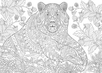 Zentangle stylized cartoon bear (grizzly bear) among blackberries or raspberries in woodland. Hand drawn sketch for adult antistress coloring book page with doodle, zentangle, floral design elements.