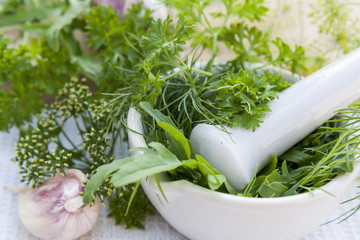 Fresh dill, parsley, arugula in the pestle and garlic on the table. Herbs and spices on wooden board and white towel.
