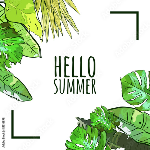 Vector square frame with hand drawn tropical palm tree leaves vector square frame with hand drawn tropical palm tree leaves summer nature background with green stopboris Image collections