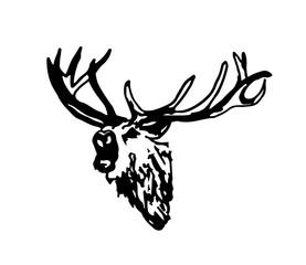 Hirsch deer design